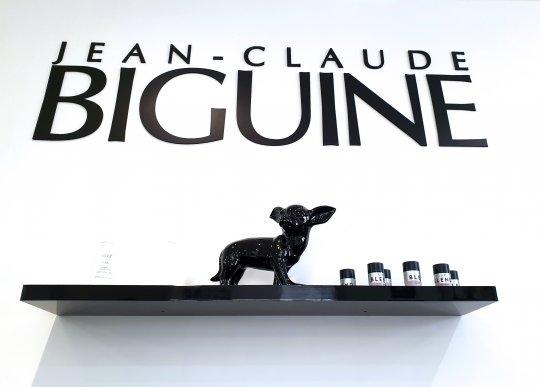Jean-Claude Biguine Sombreffe